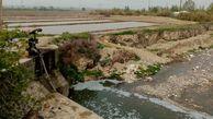 کشف 146 مورد آبیاری مزارع استان با فاضلاب خام طی 5 ماه ابتدی سال/ صدور اخطاریه برای مالکان و دستگاه های نظارتی