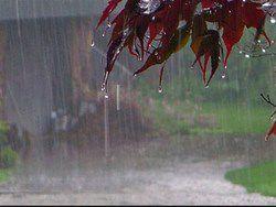 خسارت بیش از ۲ میلیارد تومان ناشی از بارش ها در گلستان