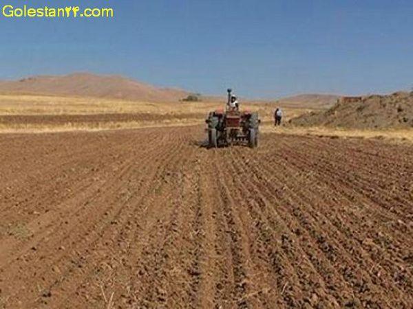 نکات فنی کارشناسان در هنگام کاشت محصول