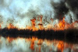 آتش سوزی در تالاب بین المللی آلاگل