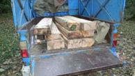 کشف الوار جنگلی قاچاق در کردکوی