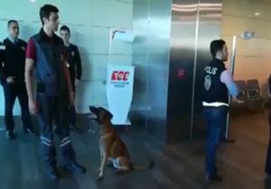 فیلم / اقدام متقابل ترکیه پس از بازرسی اتباعش با سگ در فرودگاه وین
