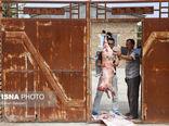 نظارت اکیپهای دامپزشکی گلستان بر ذبح دام در عید قربان