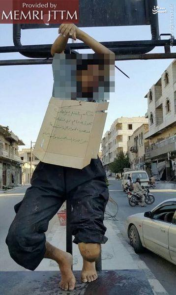 داعش فرمانده تونسی تبار خود را در سوریه اعدام کرد+عکس
