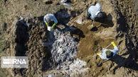 دفن لاشه هشت هزار پرنده و دیگر رخدادهای خبری گلستان در هفته گذشته
