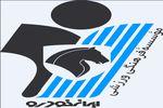 شکست تیم پیکان تهران در مقابل تیم گلستانی