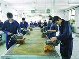 بهرهمندی بیش از ۲۸ هزار نفر از آموزشهای فنی و حرفهای در استان گلستان