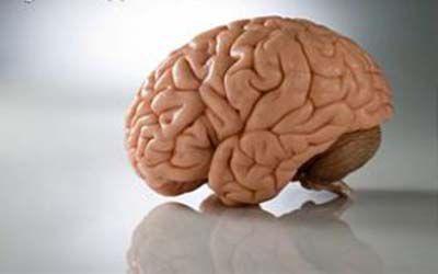 راهکارهای آسان برای تقویت مغز