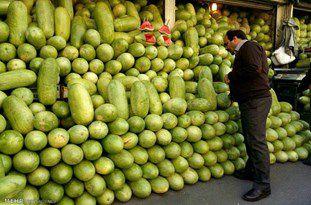 برداشت ۸۵ درصدی هندوانه در گلستان