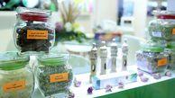 راه اندازی دهکده گیاهان دارویی در گالیکش