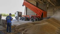 ضرورت ثبت نام محل ذخیره سازی محصولات کشاورزی در سامانه جامع انبارها