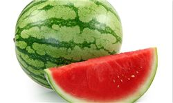 برداشت ۳۰ هزار تن هندوانه از مزارع استان