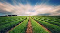 هشدارهای هواشناسی به کشاورزان تا ۳۱ فروردین