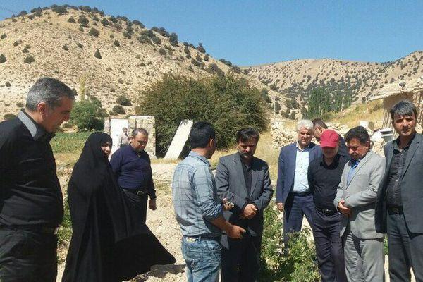 کاشت زعفران و گل محمدی در روستاهای کوهپایه ای گرگان
