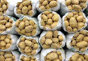 قیمت پایین سیب زمینی علت اعتراض کشاورزان گلستانی