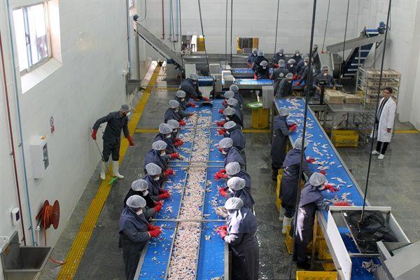 شرایط سختِ کار در کارخانههای کوچک