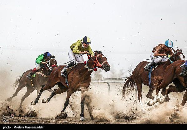 هفته دوم مسابقات اسبدوانی تابستانه کشور در بندرترکمن برگزار شد