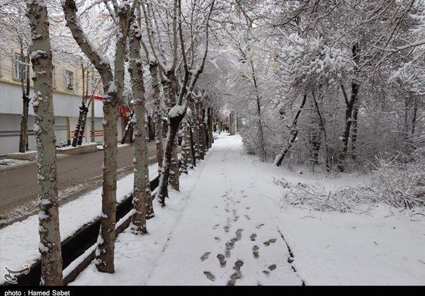 اخبار هواشناسی ایران ۹۸/۱۱/۹|پیش بینی برف و باران ۳روزه در برخی استانها