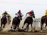 افتتاح نخستین آموزشگاه پرورش اسب وسوارکاری شمال کشور در شهرستان ترکمن