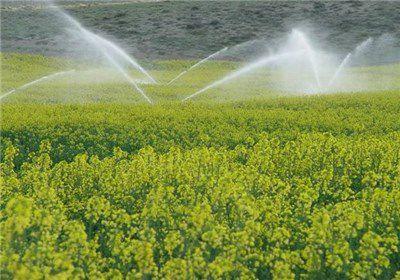 تجهیز 40هزارهکتار از مزارع گلستان به آبیاری نوین
