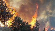 روشن کردن آتش در جنگلها و مراتع جرم است